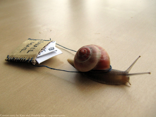 Snail Mail Funny Photo - Viral Cycle Time